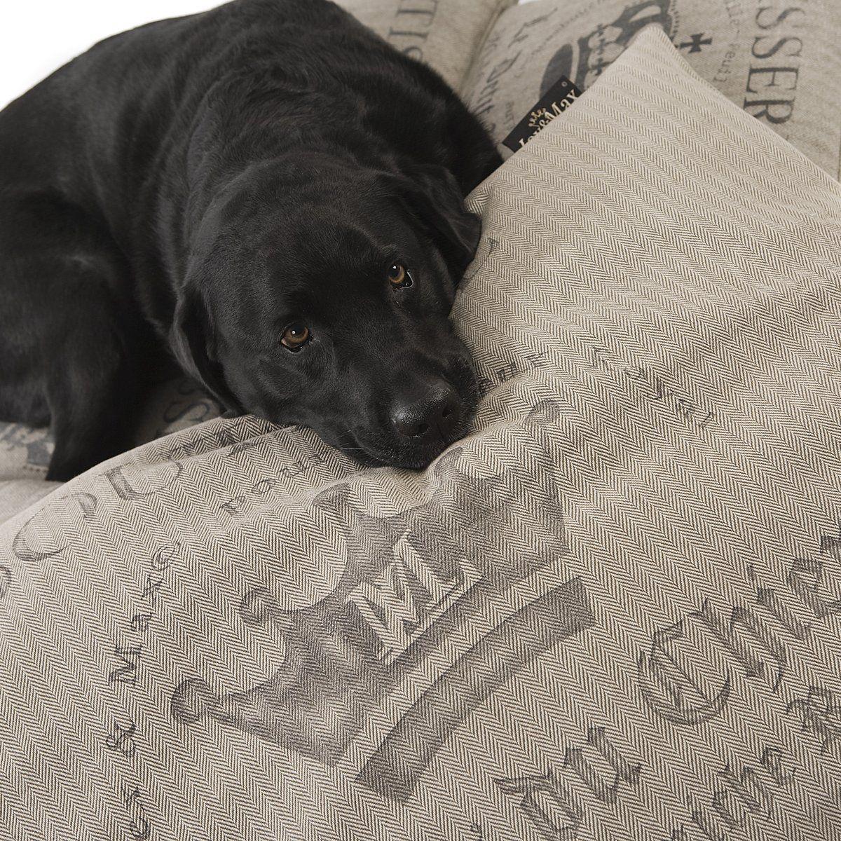 de leukste hondenbedden
