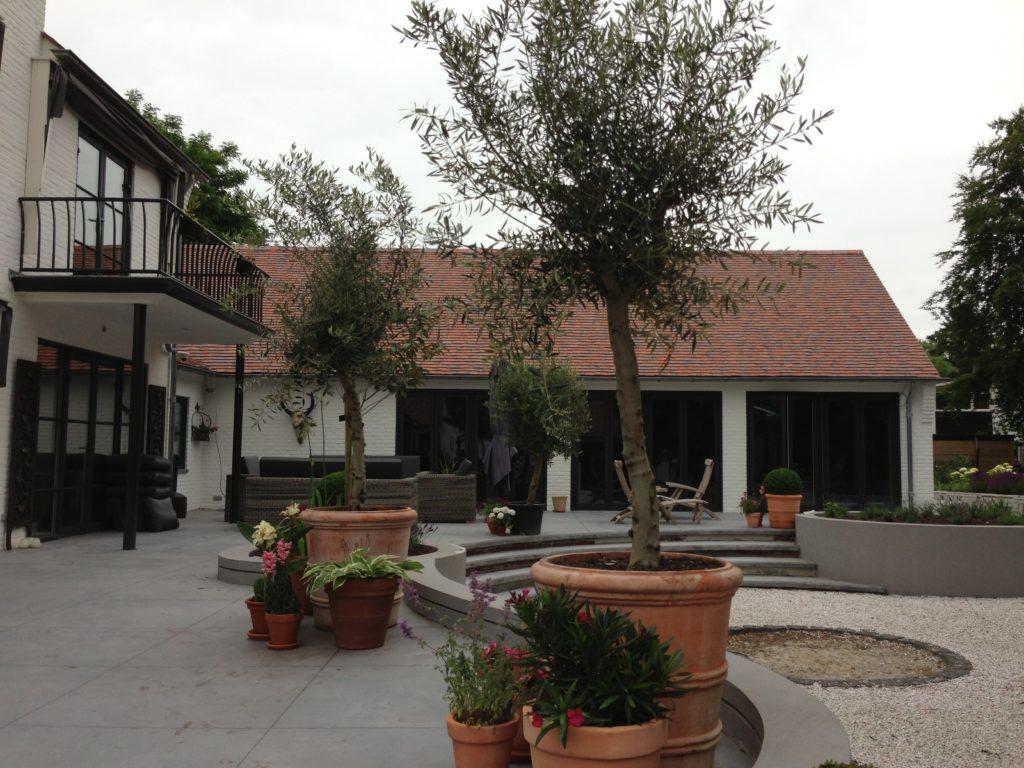 mediterraanse tuin ontwerp met ronde vormen in het terras