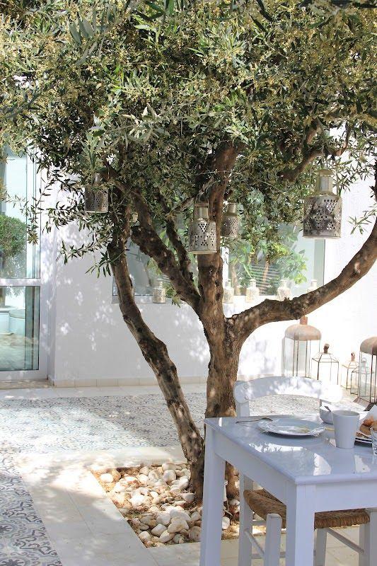 mediterrane voortuin ontwerpen