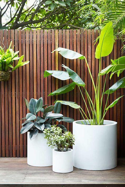 witte ronde plantenbakken met moderne planten