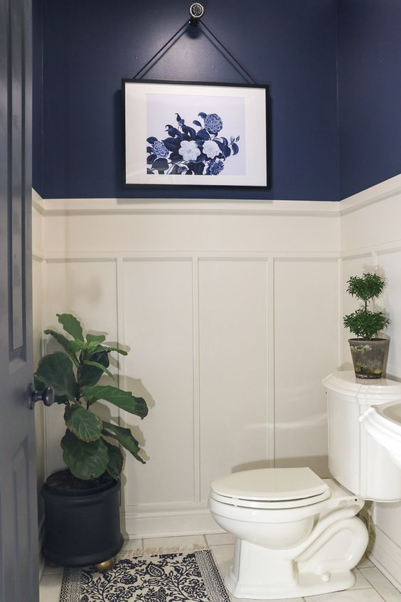 blauw modern landelijk toilet met fotolijstje en een plant