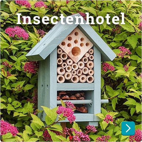 insectenhotel goedkoop