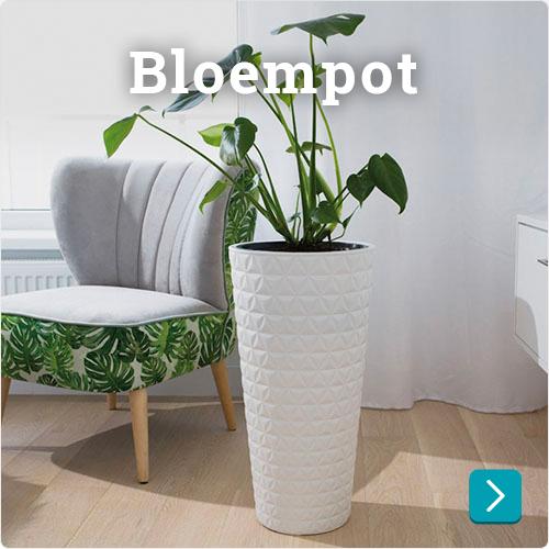 bloempot goedkoop