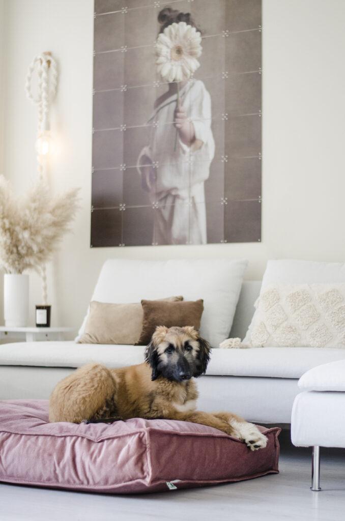 2L Home & Garden Hondenkussen Velvet Oud Roze - 120 x 80cm (5)